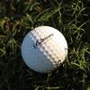 Biltmore Golf Ball
