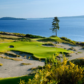 Chambers_Bay_15th_Tree.jpg