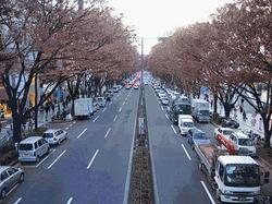 Omotesando-district-Tokyo.jpg