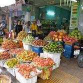 Abundant-Fruits.jpg