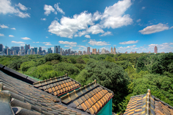 Stanford-White-Mansion-at-973-Fifth-Avenue-Roof-View.jpg