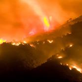 Wildfires-wpcki.jpg
