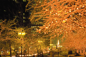 Montreal-is-a-festival-of-light-at-Christmastime.jpg
