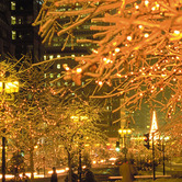Montreal-is-a-festival-of-light-at-Christmastime-wpcki.jpg