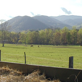 Cade-s-Cove-is-a-place-of-stunning-beauty-wpcki.jpg