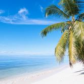 island-beach-nki.png