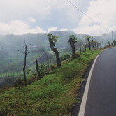 Costa-Rica-road-nki.jpg