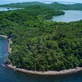 WPC News | Pearl Island
