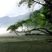 costa-rica-southern-zone-nki.jpg