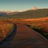 Huntsman Springs - Boardwalk in Wildlife Refuge