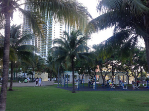 the-park-in-edgewater-miami.jpg
