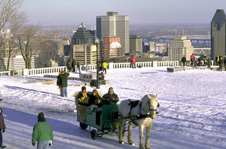 WPC News | A beautiful view of Montreal from the top of Mount Royal