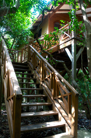 Ensconce-yourself-in-a-luxurious-treehouse-at-Hamanasi-Resort.jpg