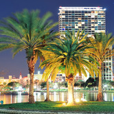 Orlando-Lake-Eola-skyline-at-night.jpg