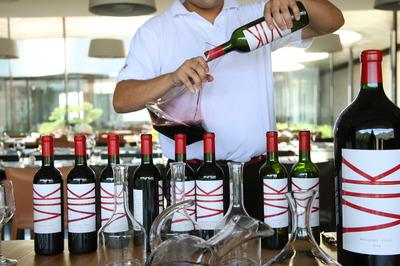 At-Vina-Vik-you-lodge-in-the-vineyards.jpg
