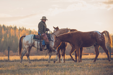 At-Western-Pleasure-Ranch,-the-Old-West-still-lives.jpg