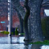 Flooded-Streets-keyimage.jpg