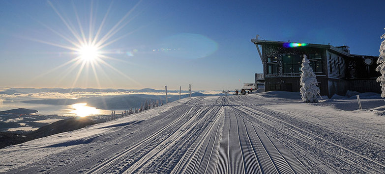 Top 5 Great Winter Ski Getaways in U.S. Revealed