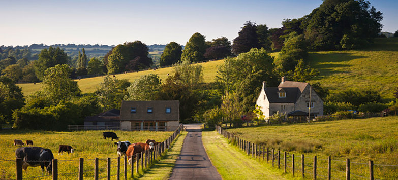 British Farmland Market Mooted by Brexit Uncertainty