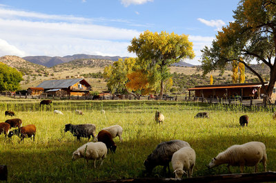 A-beautiful-pastoral-scene-at-Canyon-of-the-Ancients-Guest-Ranch.jpg