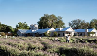 Los-Poblanos-Historic-Inn-Organic-Farm.jpg