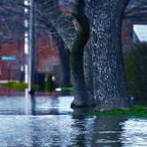 Flooded-Streets-keyimage2.jpg