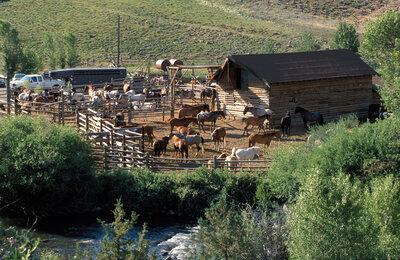 Bitterroot-Ranch-(Courtesy-Claude-Poulet).jpg
