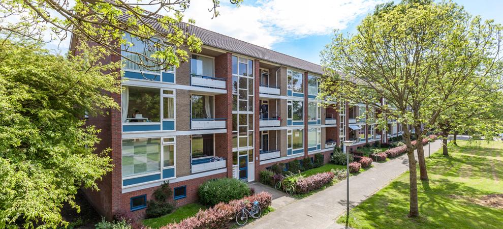 Dutch Housing Popular with German Money