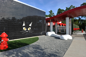 Disney Opens 'Luxury Pet Resort' in Orlando