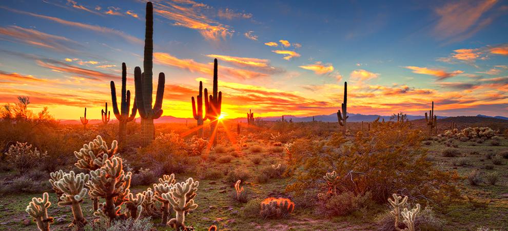 Desert Mountain Sunset Wallpaper Download