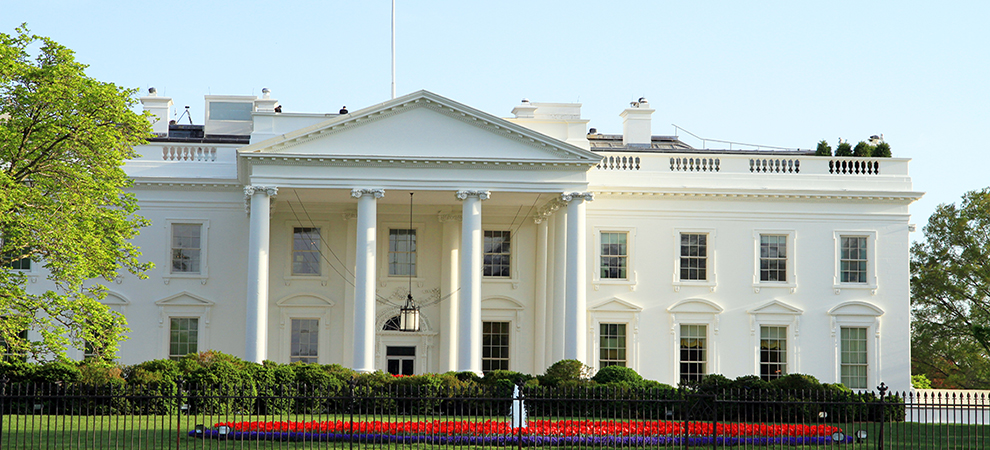 16 Percent of US Residents Considering Leaving the Country Based on Who Occupies the White House Next Year